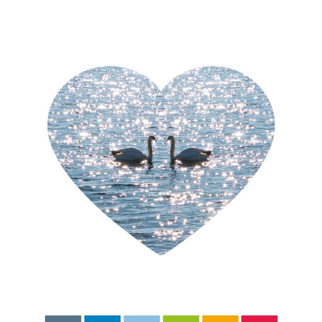 #valentinstag #compressoag #agenturamsee #agencylife #lieblingsagentur